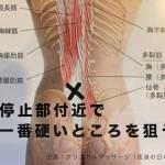 固まった筋肉に対して アプローチ法②